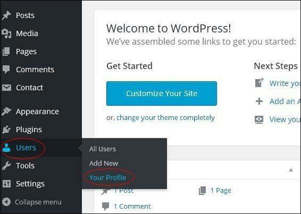 WordPress 个人档案